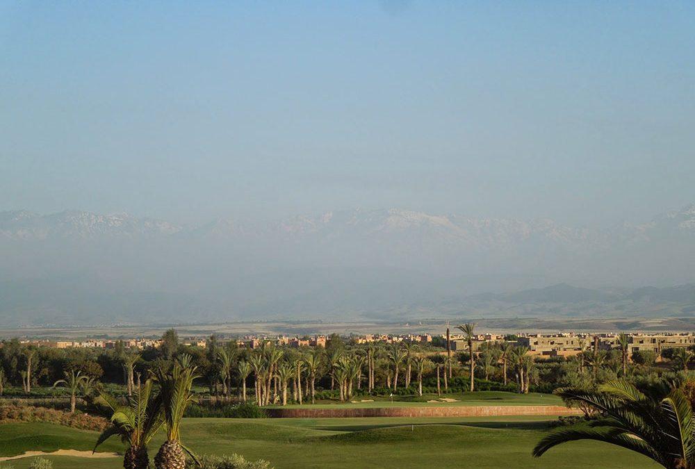 Golfplatz Royal Palm